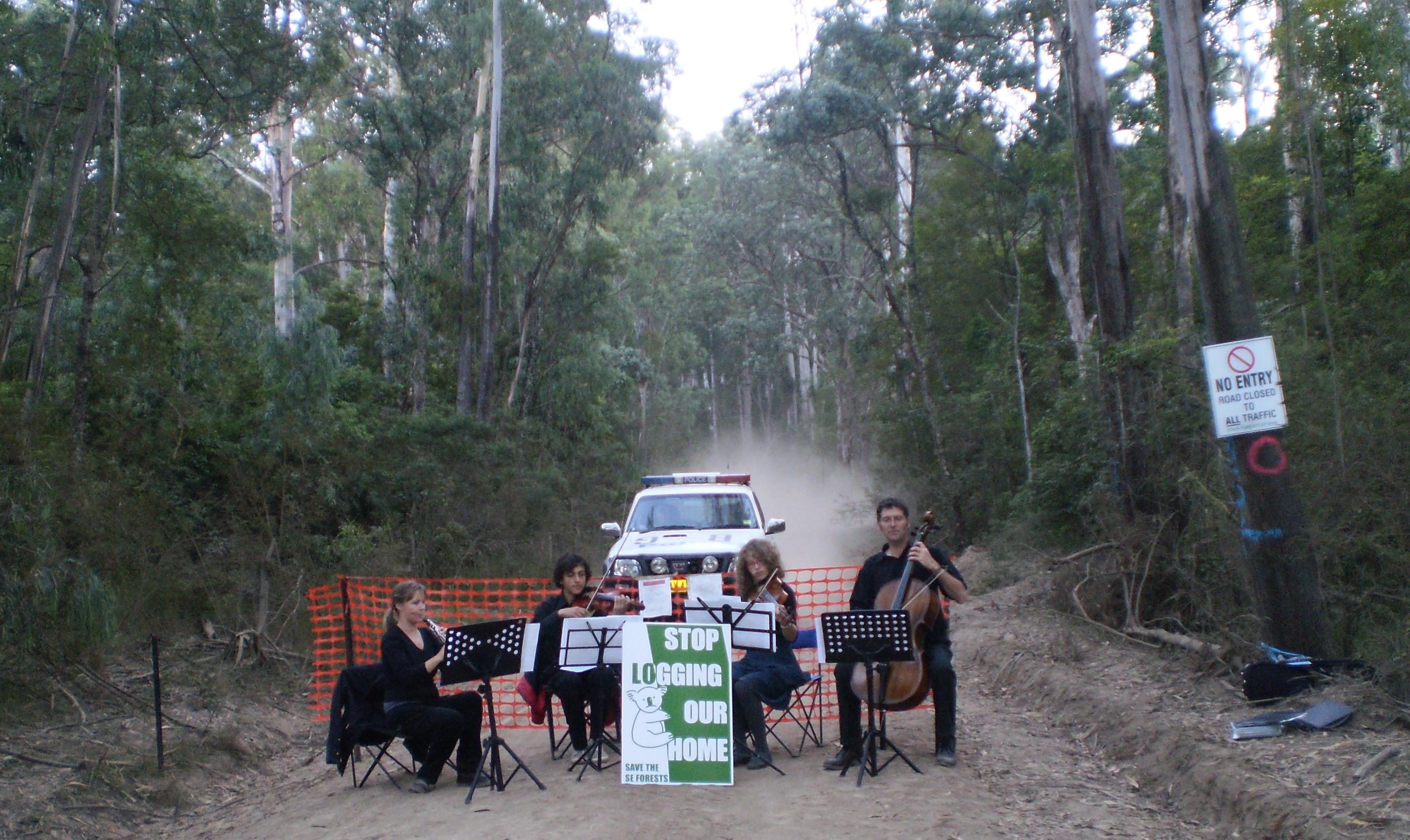 Mumbulla NSW
