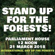 Stand up for the forests